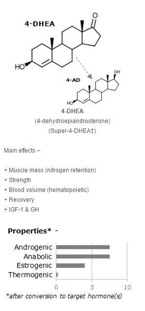 anabolic amplifier side effects