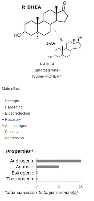 R-DHEA.png
