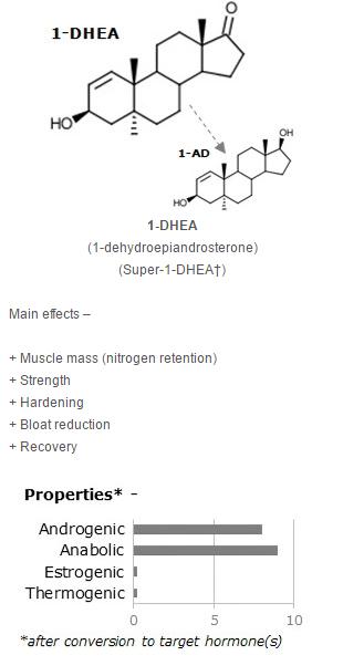1-DHEA