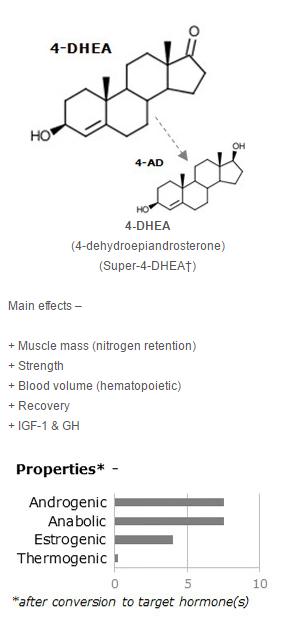 4-DHEA