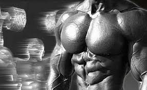 Faster Negatives for Superior Muscle Growth?