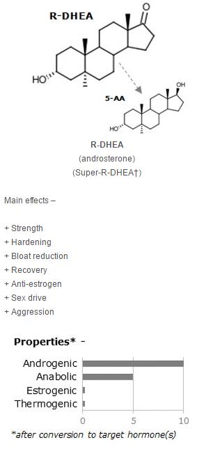 R-DHEA
