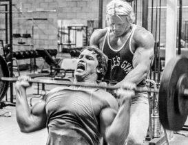 The Bodybuilding Basics Explained