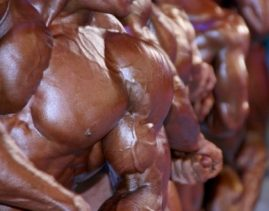 What Causes Us To Become Bodybuilders?