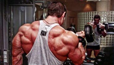 Why People Belittle Bodybuilders