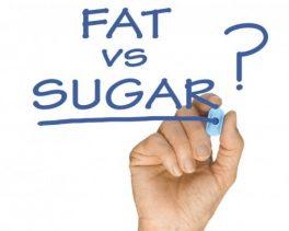 The Fat vs Sugar Debate