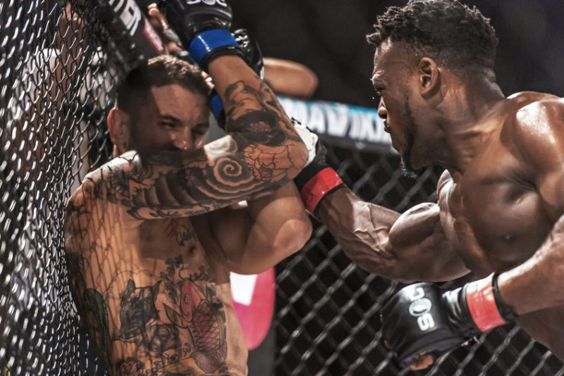 Why Did MMA Overcome Boxing?